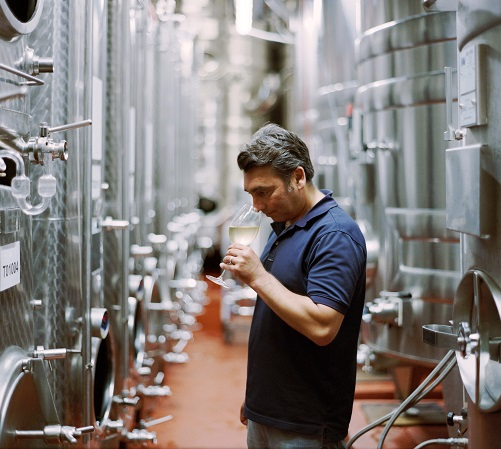 Simon Roberts in the winery